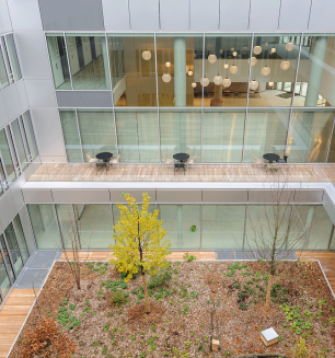 MMAIF leases 3,800 m² in the IRO building in Châtillon