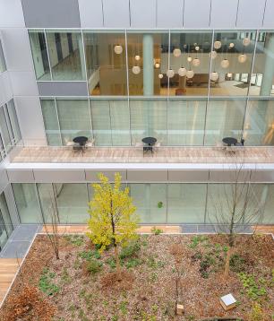 MAIF prend à bail 3 800 m² au sein de l'immeuble IRO à Châtillon